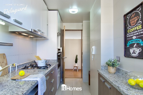 Delaguard_Home_Staging_Chile_0052